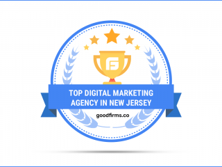 GoodFirms Endorses Wowbix for Digital Marketing Services in New Jersey